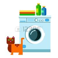 washer with detergent
