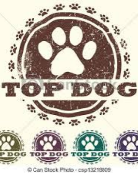 January Top Dog