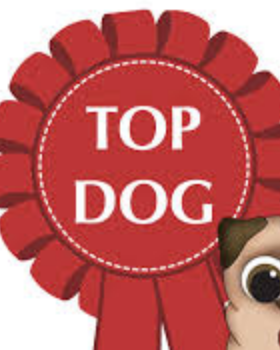 Top Dog Classroom