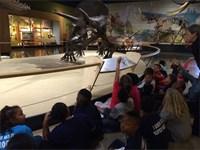Natural History Museum 2015