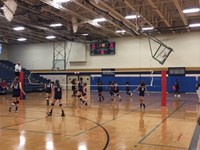 Girls Volleyball vs Ridge
