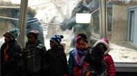Zoo - Kindergarten pt2 2016