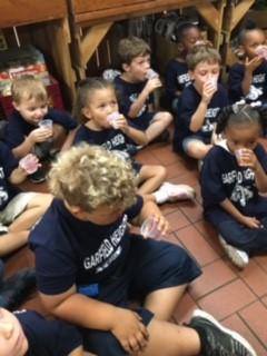Elmwood Kindergarten to Patterson's Farm