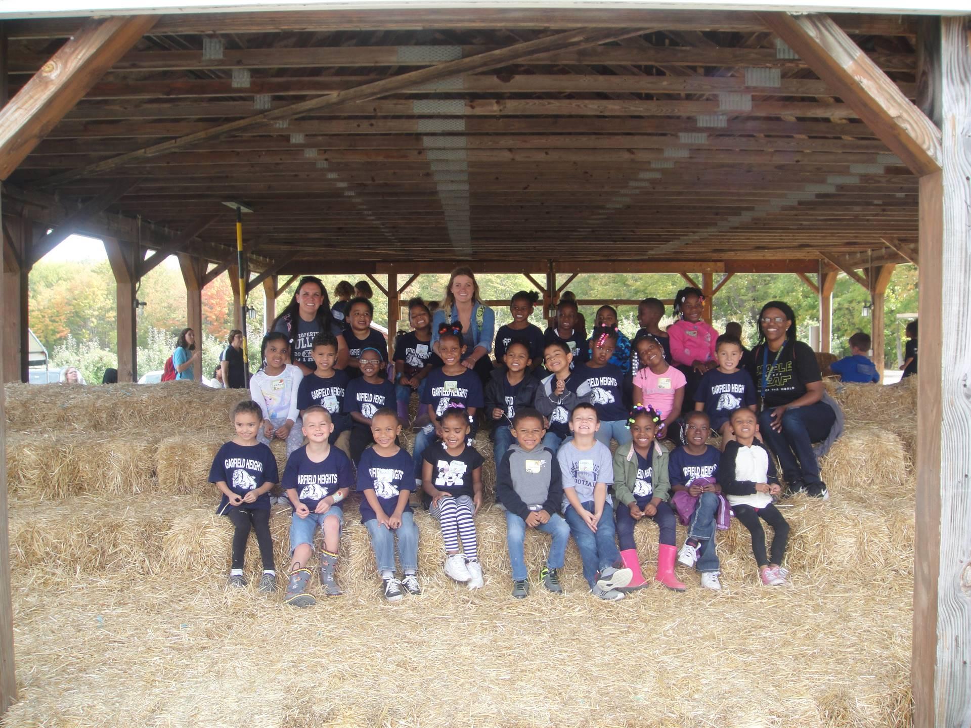 Patterson's Farm