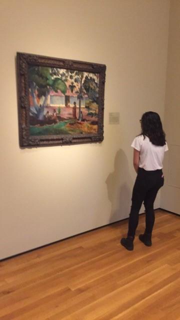 gallery 6