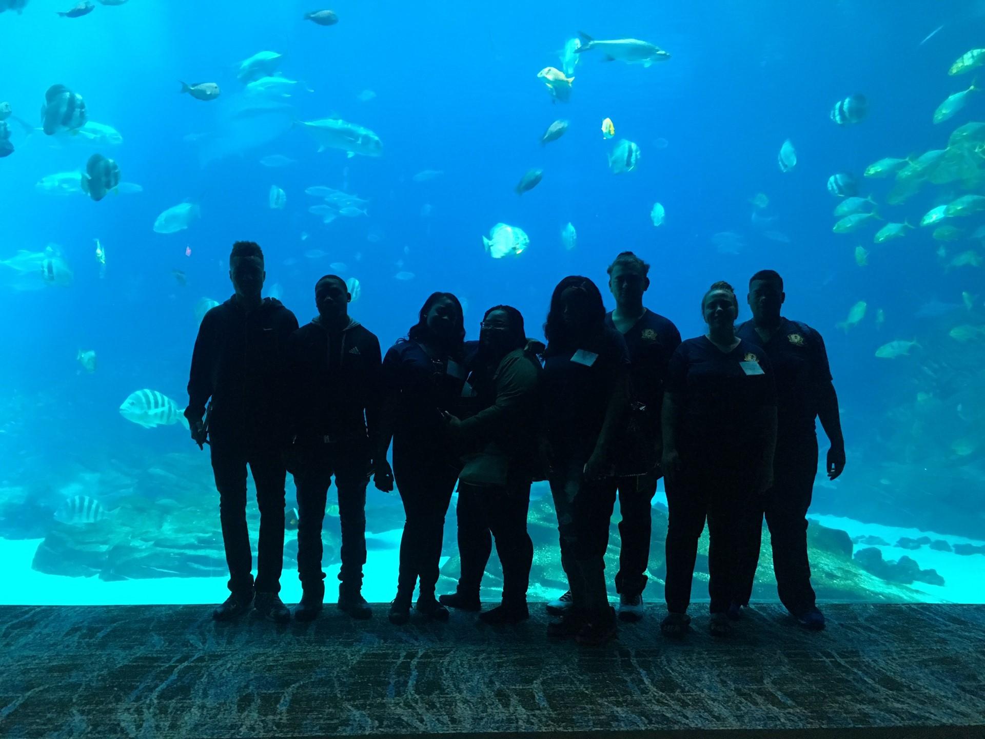 Students of Promise at Georgia Aquarium