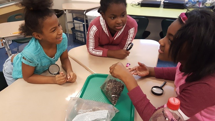 3rd Grade Learning About Terrariums