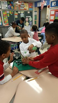students learning about and making terrariums