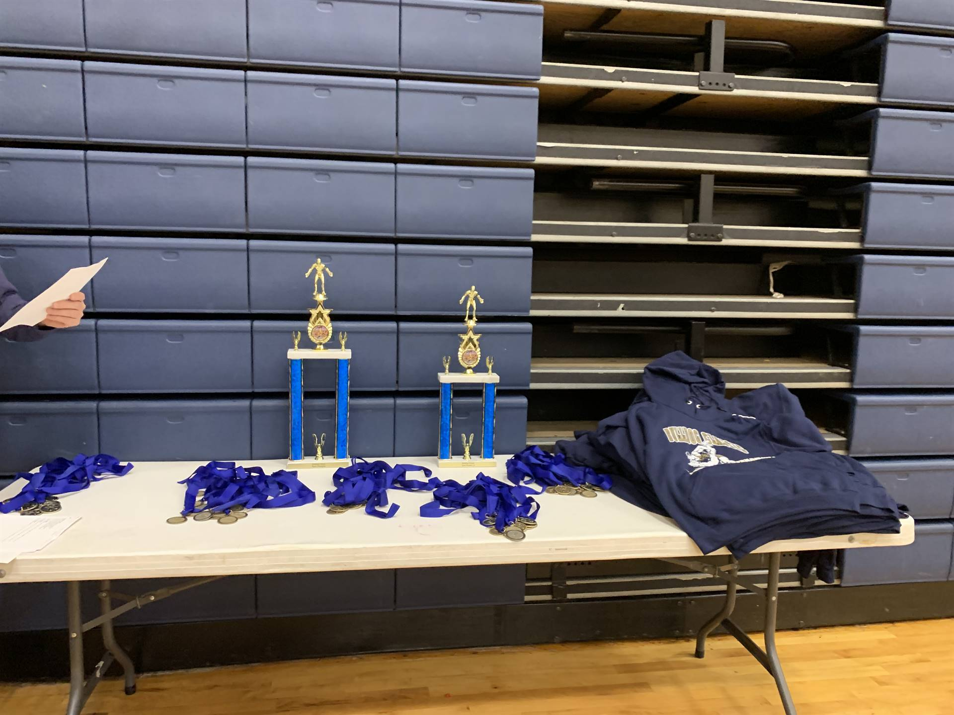 Trophies and ribbons on a table to award to participants.